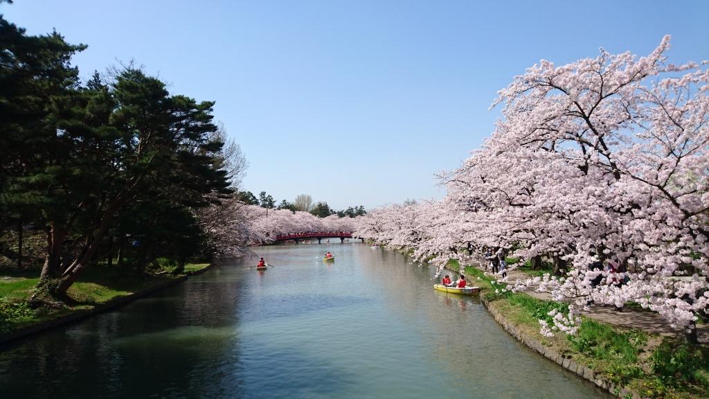 dairoku 2016 4 hirosaki park 2