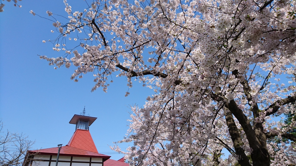 dairoku 2016 4 spring konnyamachi