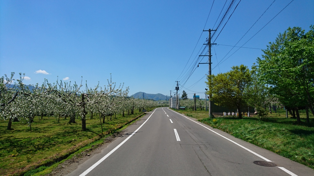 dairoku 2016 5 shimizumori road
