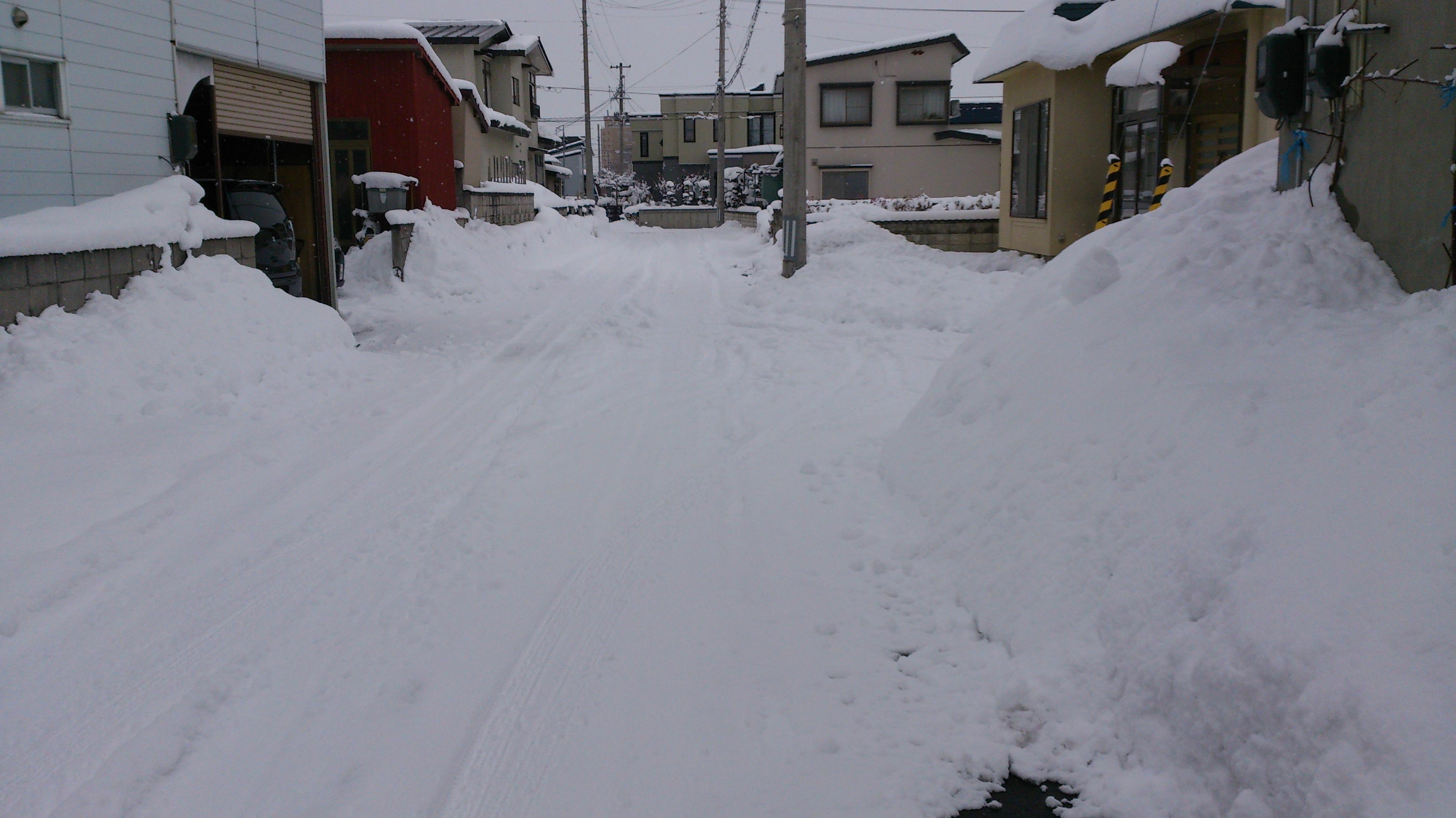 dairoku 3月のユキ