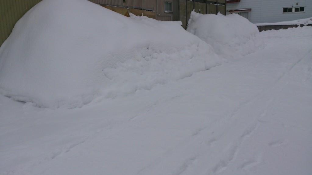 dairoku 三月の雪