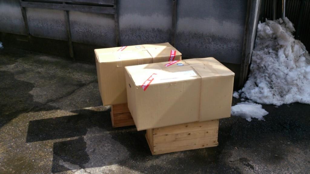 dairoku order 2015