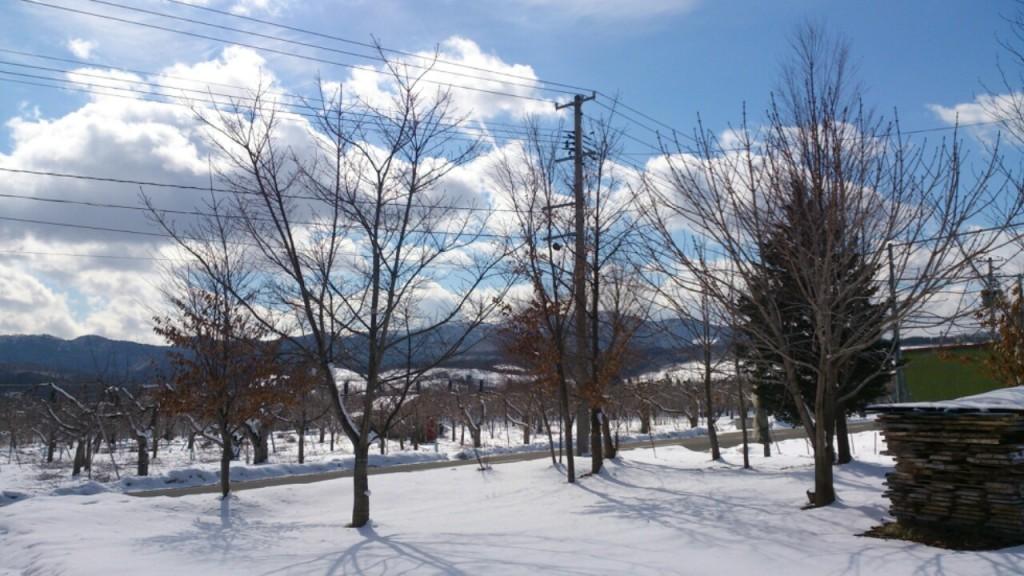dairoku 2016 2 shimizumori