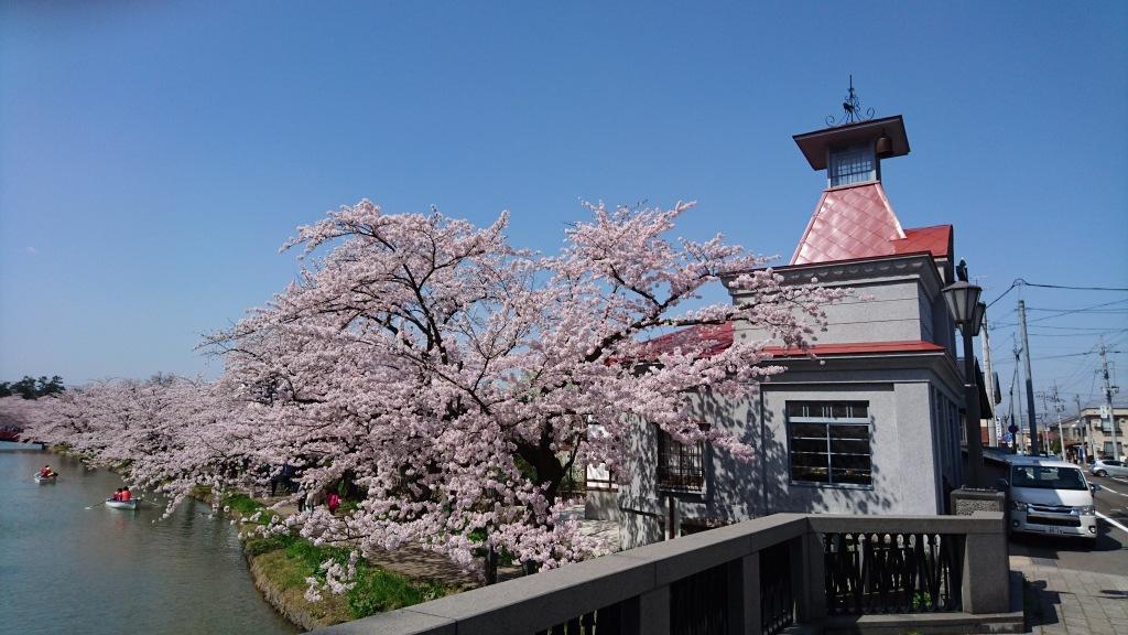 dairoku 2016 4 spring
