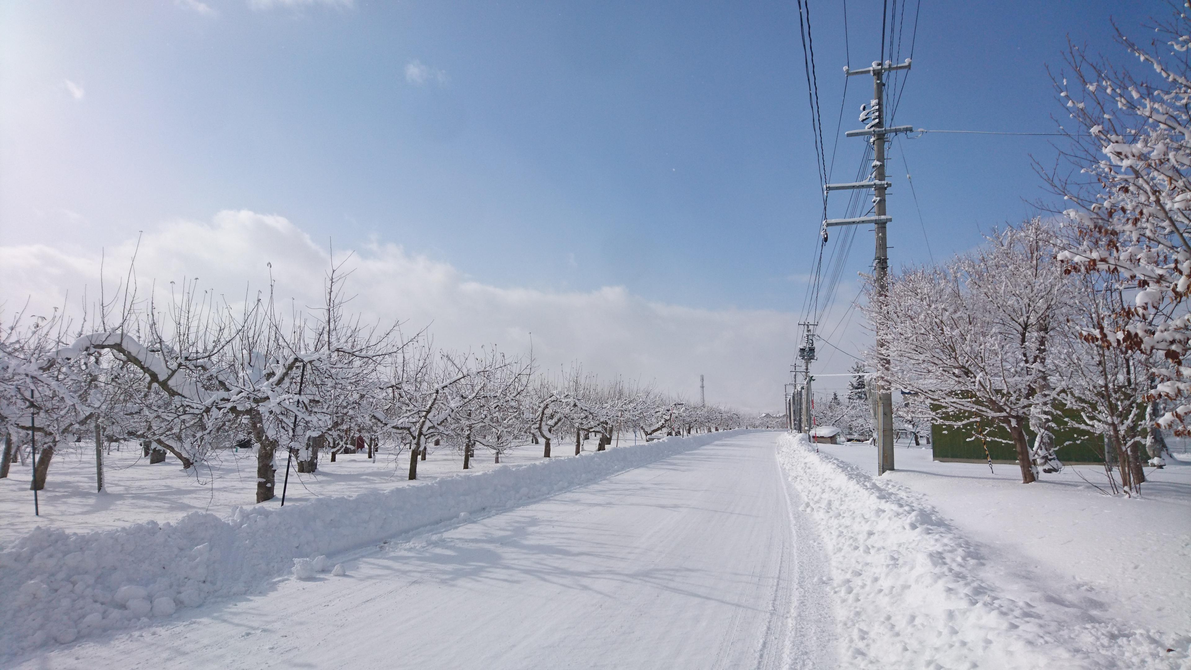 dairoku 2017 1 寒波