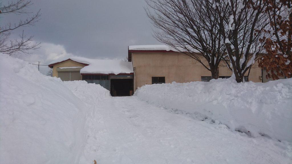 dairoku 2017 2 snow