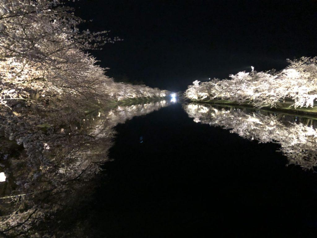 dairoku 2018 4 yozakura