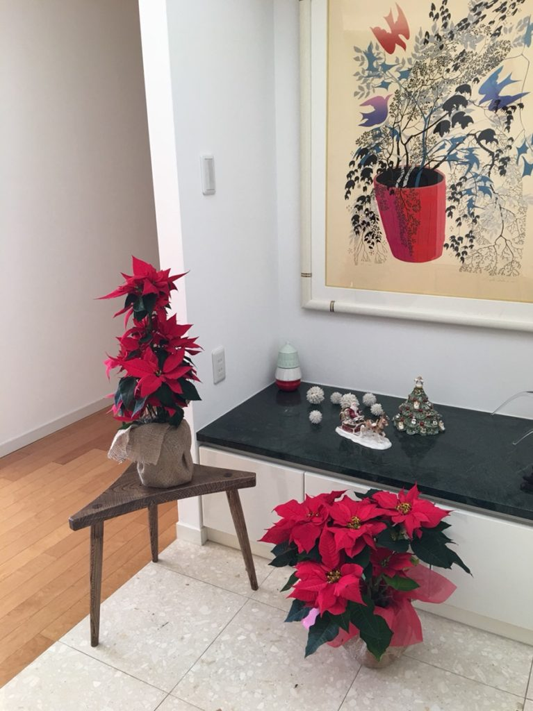 dairoku 2018 12 merry