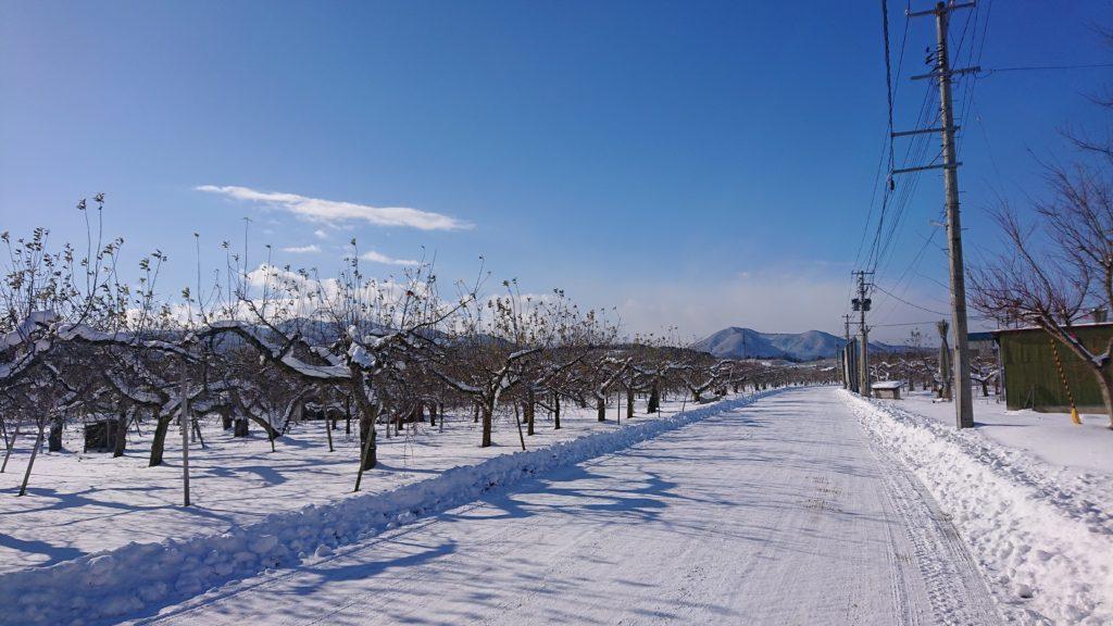 dairoku 2020 12 shimizumori winter