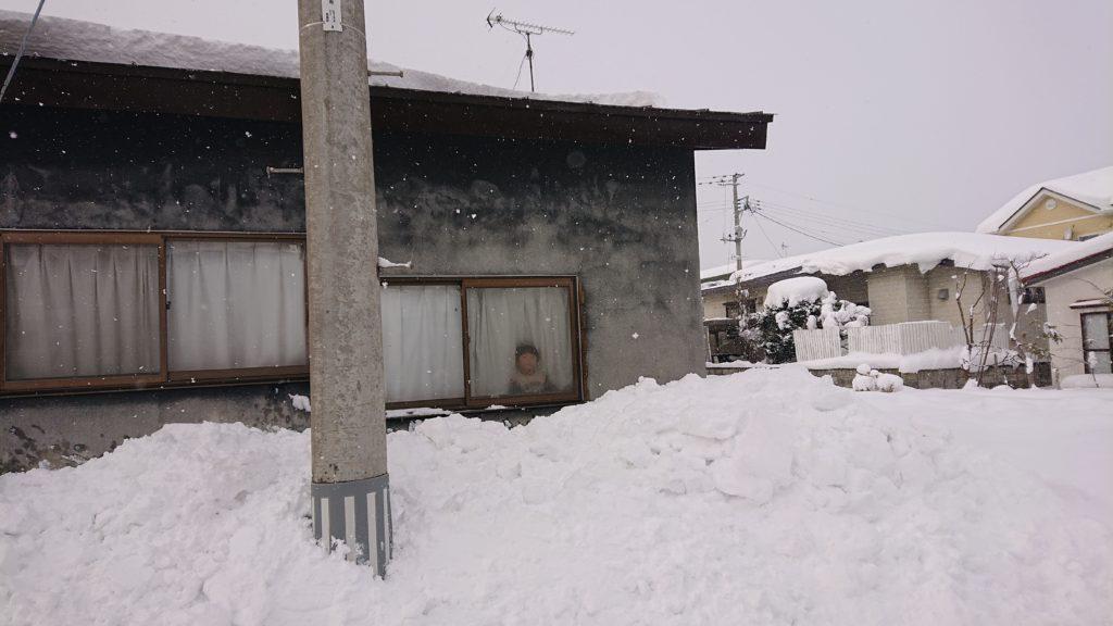 dairoku 2020 12 doka snow