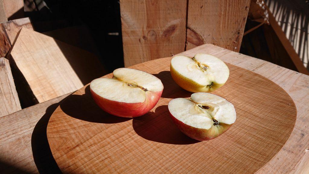 dairoku 2021 10 apple 4